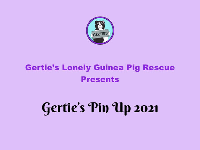 Gertie's Pin Up 2021