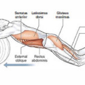 Injury Prevention In Swimming Series: Knees