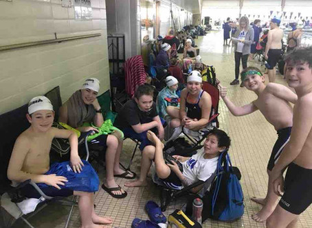 How to Survive Your Child's First Year as a Competitive Swimmer
