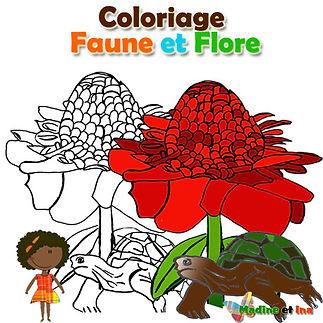 etiquette_coloriage_faune et flore.jpg