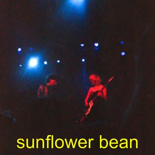 sunflowerbeanps.jpg