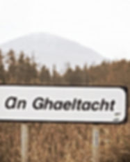 irish-language-signs-752x501_edited.jpg