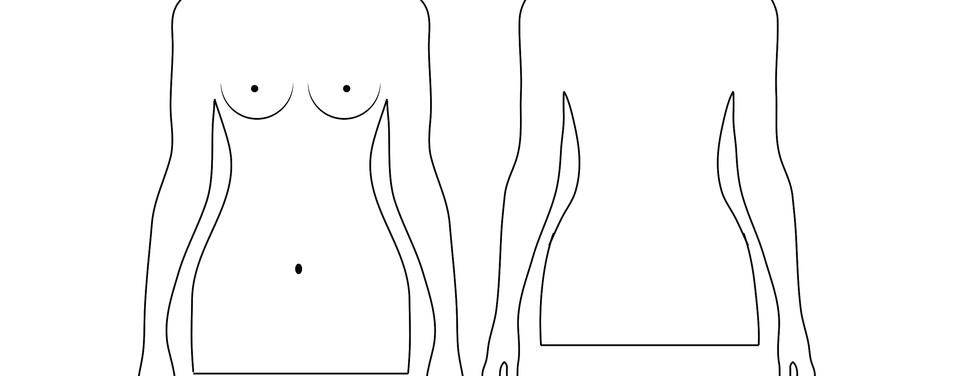 Anatomy_chart_female.jpg