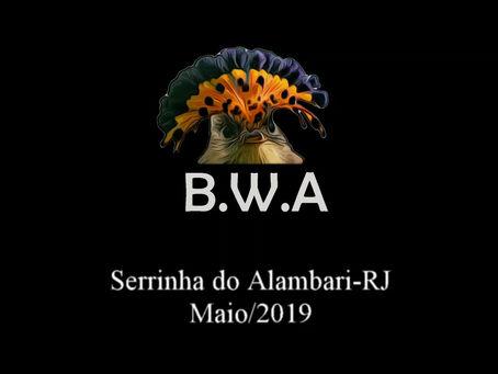 Diário de campo #028 - Guiamento na Serrinha do Alambari/RJ