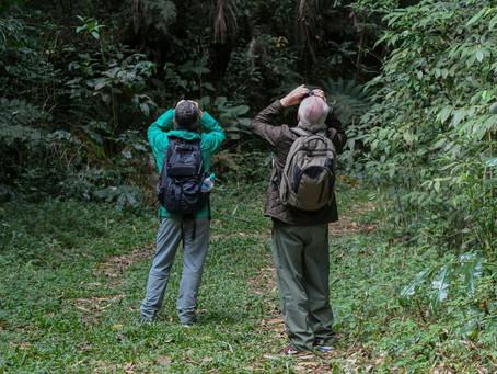 Diário de campo #032 - Guiamento no Parque Nacional do Itatiaia/RJ
