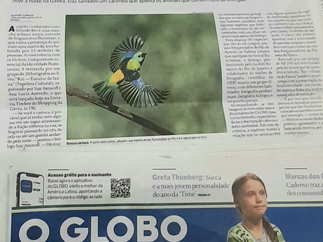 """Participação do Livro """"Rio — Ensaios da fauna"""", que traz olhar de 20 fotógrafos sobre animais do Rio"""