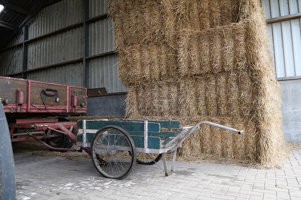 Boerderijtafereel Hillekens Hoeve