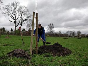 2019 Agroforestry Hillekens Hoeve
