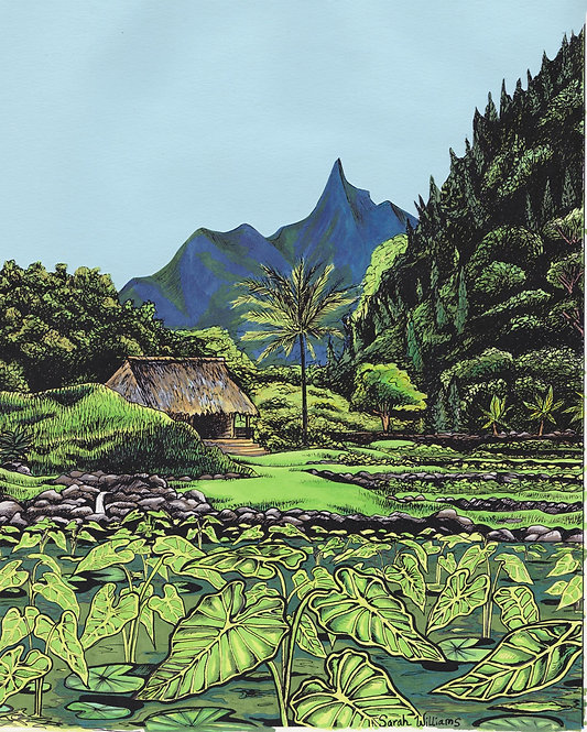 Limahuli Gardens Matted Print