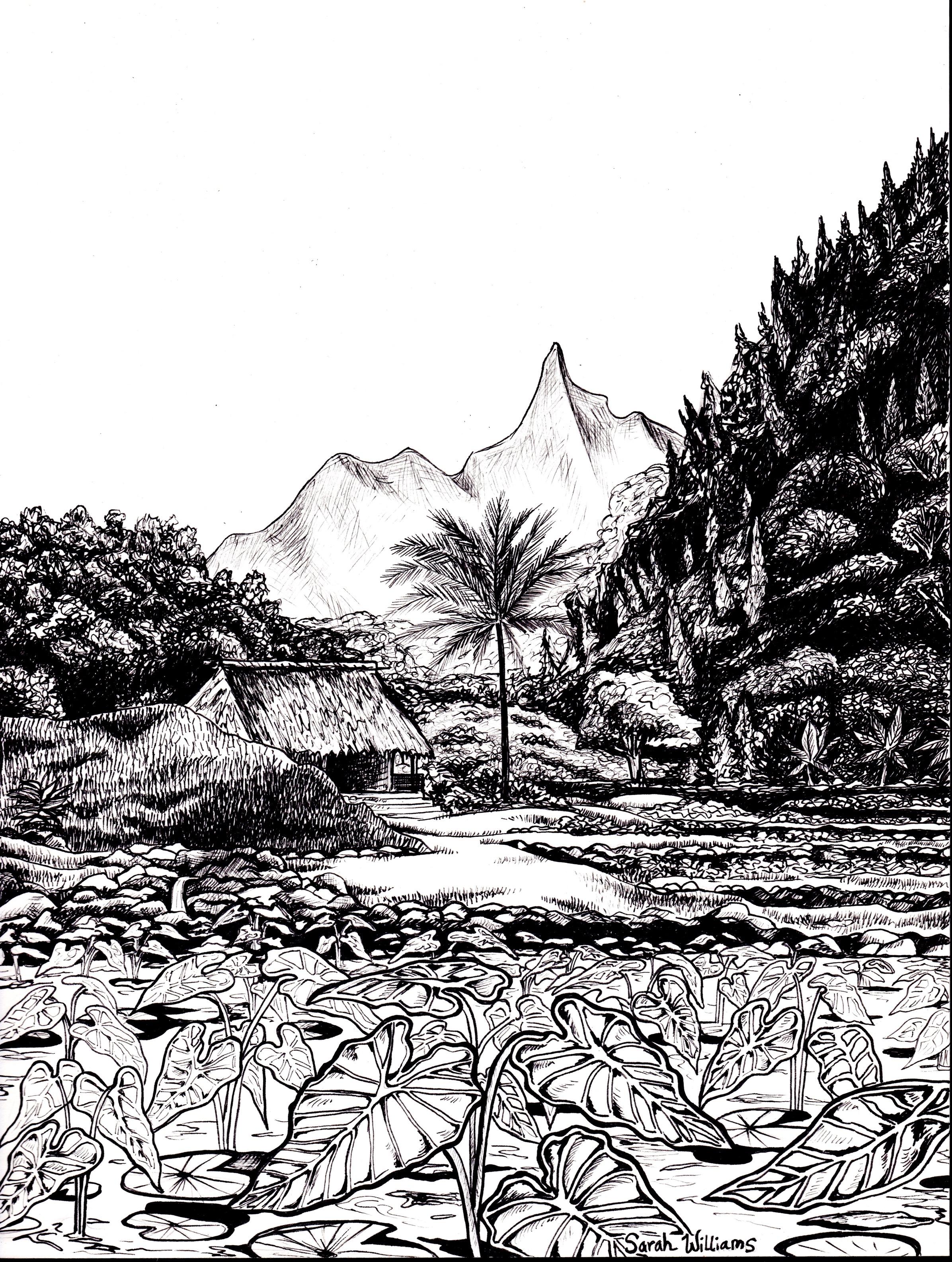 """""""Limahuli Gardens"""""""