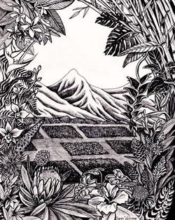 """Tropical Paradise"""