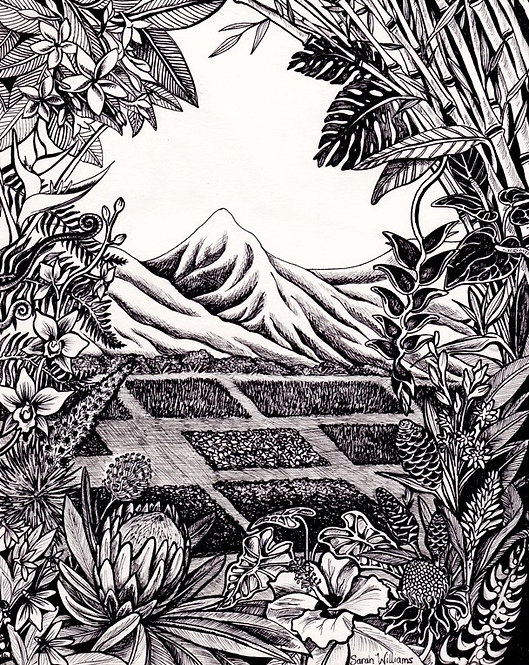 Tropical Paradise B&W Matted Print