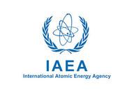 Соглашение между МАГАТЭ (IAAE) и МСВАЭП