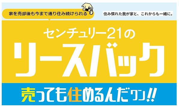 c21lb-top.jpg