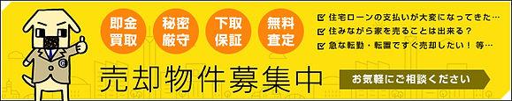 banner_center_sale.jpg