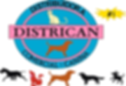 districan logo png.png
