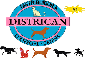 districan logo png.png