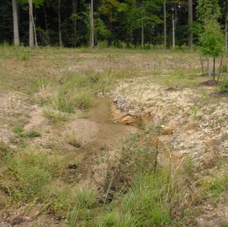 Stream Restoration and Mitigation