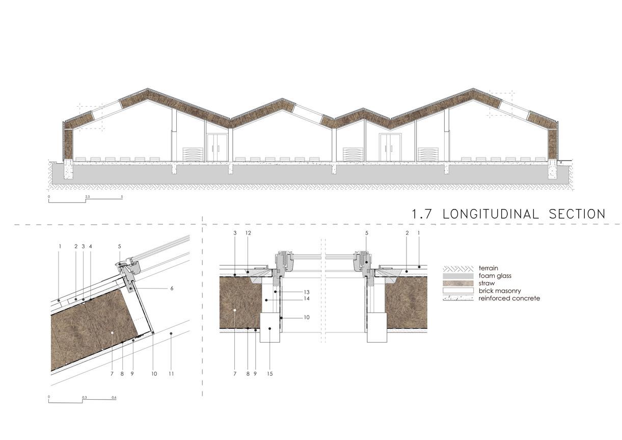 longitudinal section.jpg