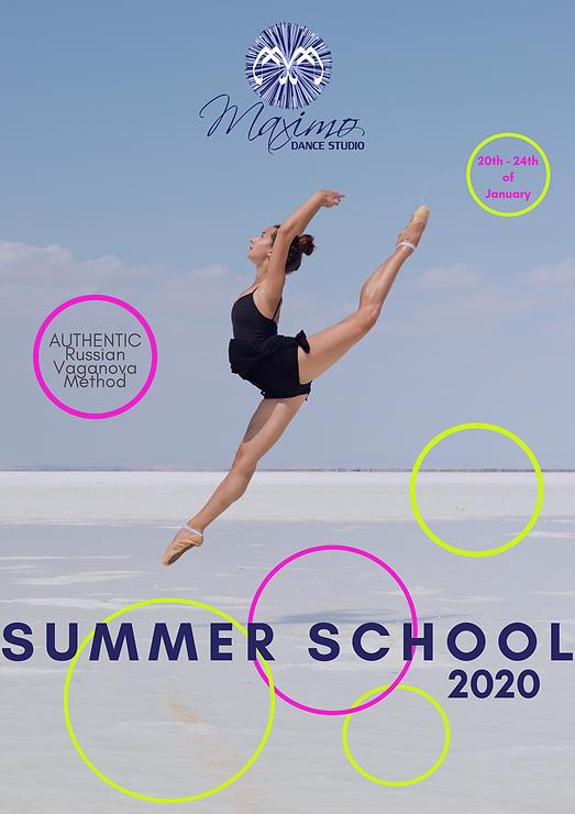 Summer School 2020.png