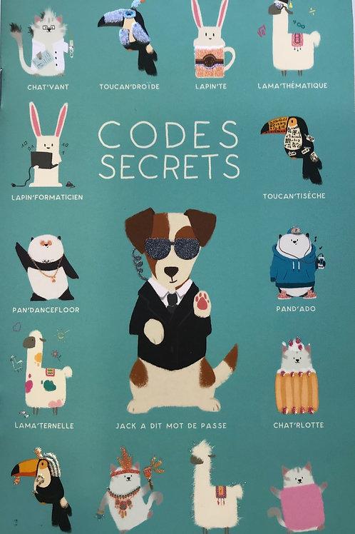 Carnet à codes secrets