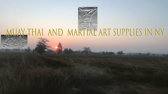 Muay Thai and Martial Art Supplies in NY