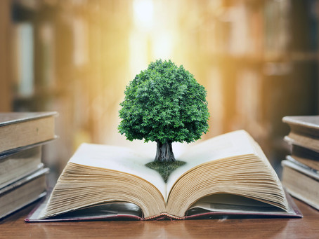Distinguishing Between Knowledge, Intelligence, and Wisdom