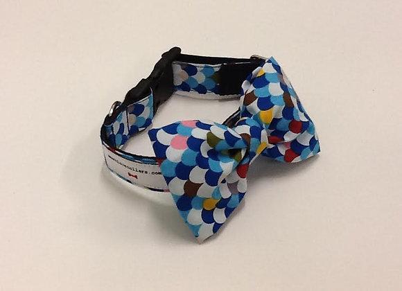 Multi Colour Bow Tie Collar