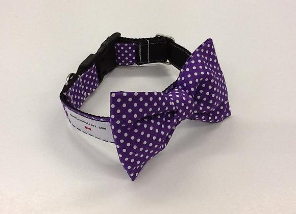 Purple & White Spot Bow Tie Collar