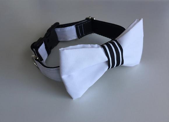 White Bow Tie Collar & Black & White Stripe Centre