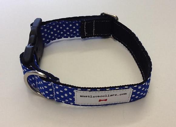 Royal Blue & White Spot Collar