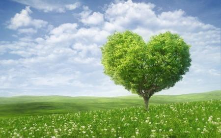 A singularidade da vida: Só o amor é real