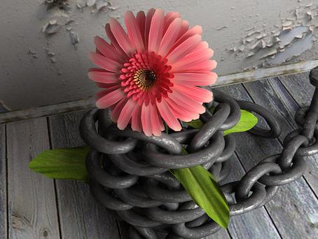Arquétipo da vítima - Um elo na corrente da escravidão