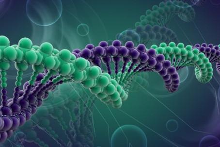 A restauração da memória genética