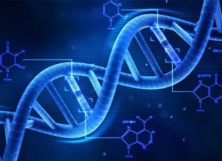 Como o DNA reage as emoções