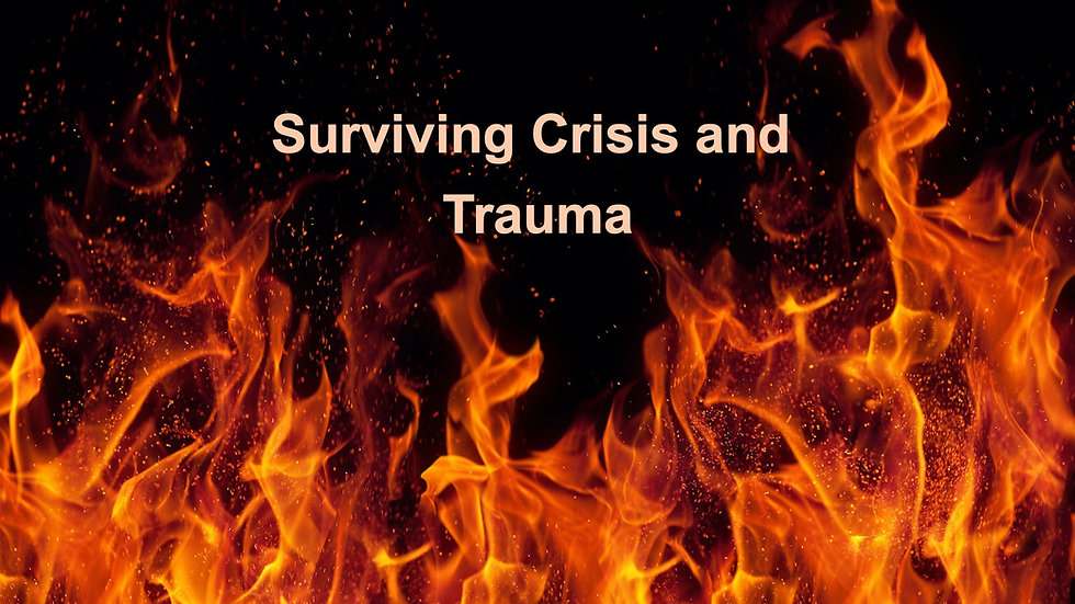Surviving Crisis