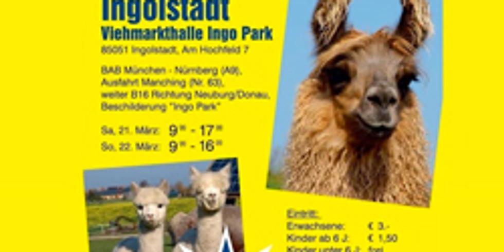 Journées européennes de l'alpaga et du lama