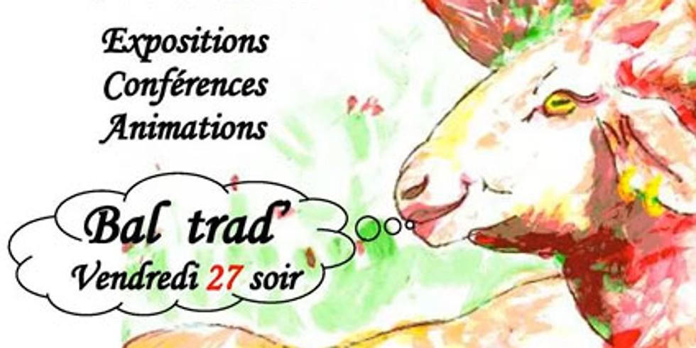Festival de la Laine à Sauxillanges (Puy de Dôme)