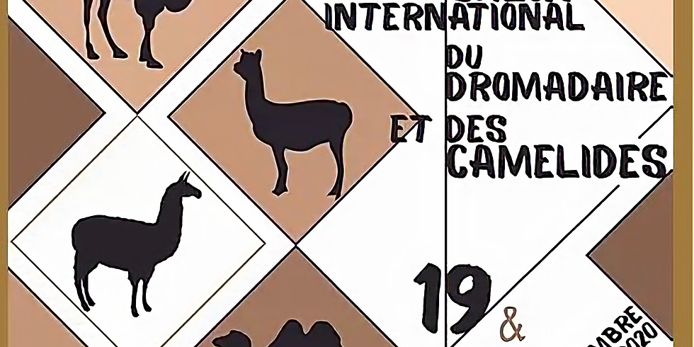 Salon international du DROMADAIRE et des camélidés REPORTE EN 2021