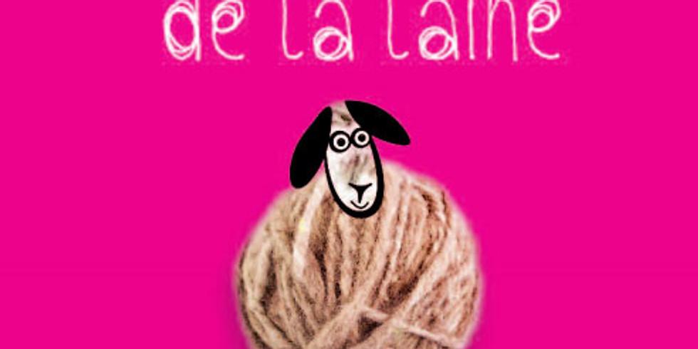 Journée de la laine à Génolhac (Gard)