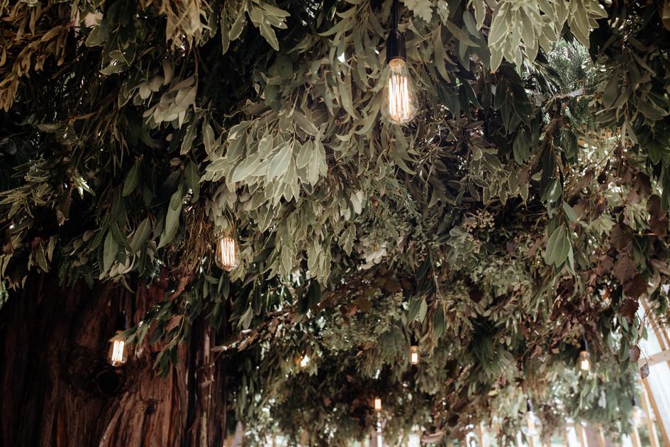 auckland_wedding_lighting.jpg