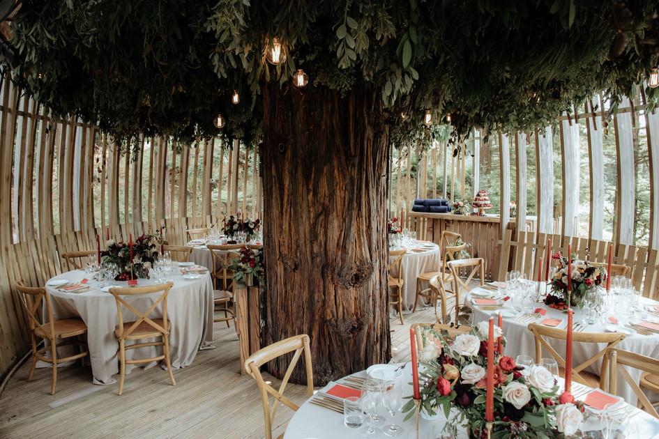 unique_wedding_venues_auckland.jpg