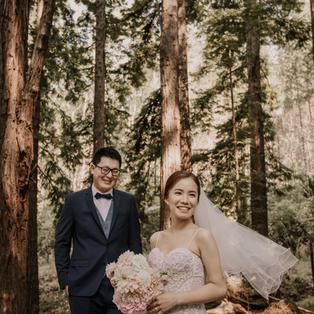 Redwoods Treehouse Wedding