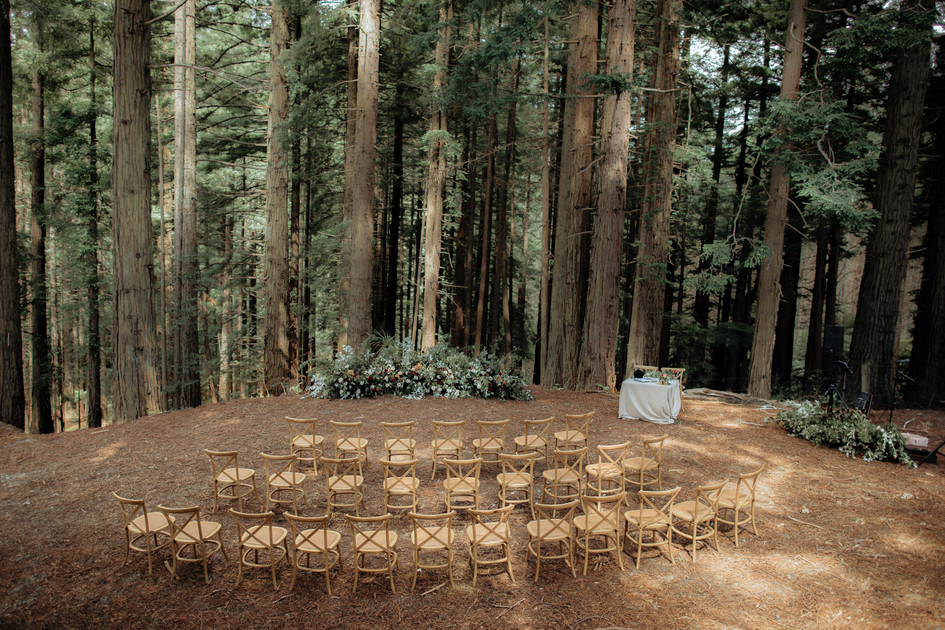 woodland_wedding_auckland.jpg