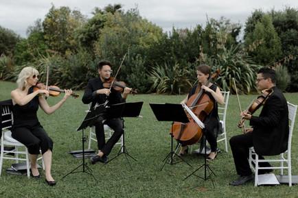 black_quartet.jpg
