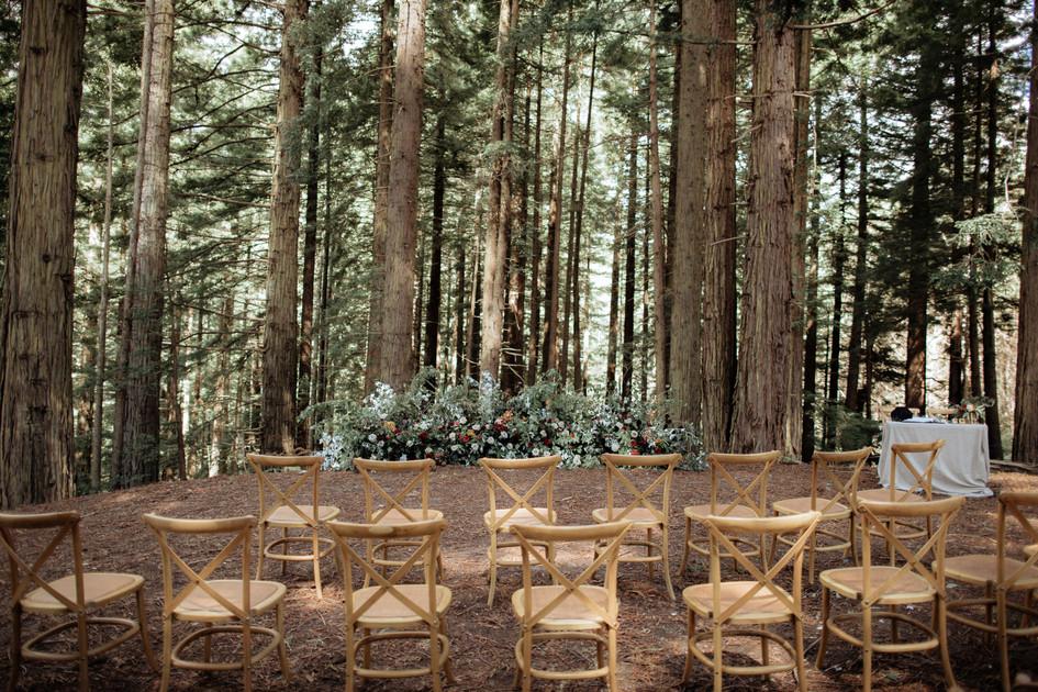 treehouse_wedding_auckland.jpg