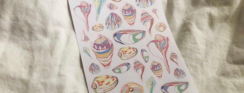 Rainbow Seashell Pen drawing art