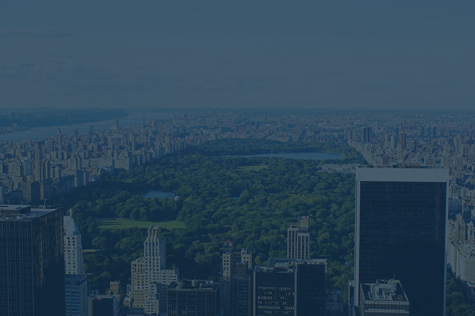 central-park-from-above2 (filtered).jpg