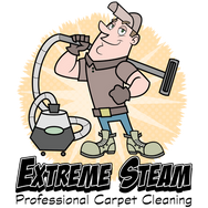 steam cleaner logo
