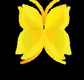 Papillon jaune.png